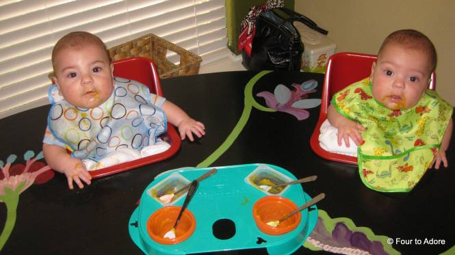 Here is my twin feeding tray.  It does a good job of housing all four bowls, but I don't like that you have to use baby food tubs since we make our own food.