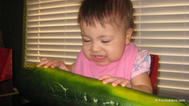 Rylin is a clever girl and knew this was meant to be eaten.  She went after it like corn on the cob.