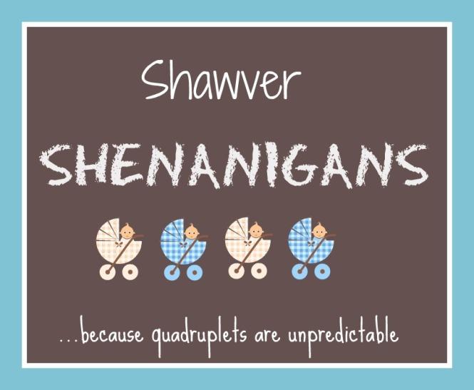 Shawver Shenanigans