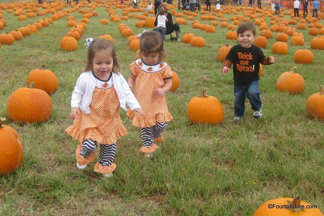 Flower Mound Pumpkin Patch