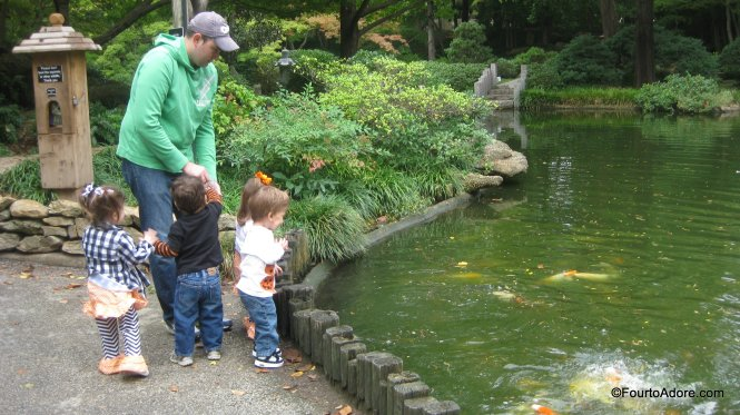 The quads had a blast stopping at each Koi pond to for a feeding frenzy.